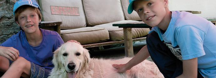 letselschade schadevergoeding hondenbeet